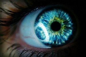 Ученые изобрели очки расширяющие цветовую палитру