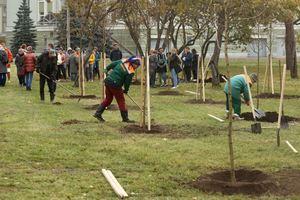 В Санкт-Петербурге компания «Гедеон Рихтер» посадила яблоневый сад